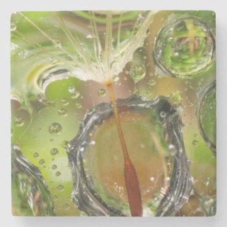 Water on dandelion seed, CA Stone Coaster