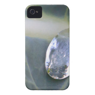 Water on Fresh Plant Leaf iPhone 4 Case