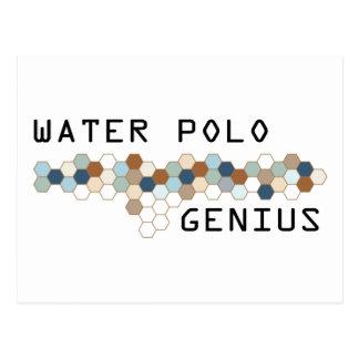 Water Polo Genius Postcard