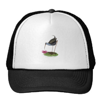 water rail wild bird cap