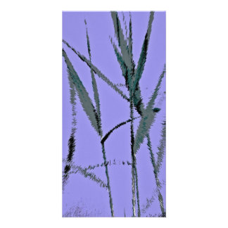Water Reed Digital Art Photo Cards