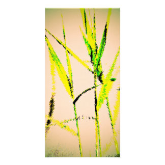 Water Reed Digital Art Picture Card