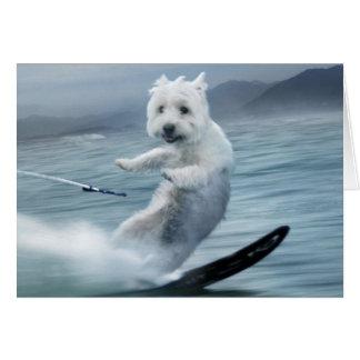 Water Skiing Westie! Card