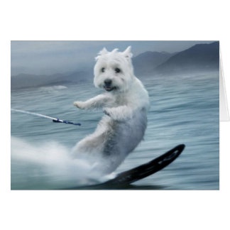 Water Skiing Westie! Greeting Card