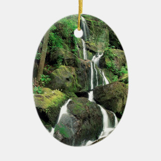 Water Smoky Mountains Tennessee Stream Ornament