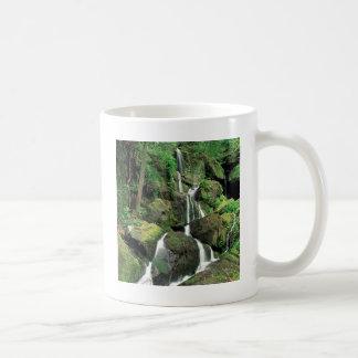 Water Smoky Mountains Tennessee Stream Mugs