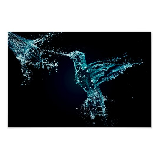 Water Splash Bird Poster