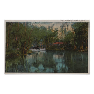 Water View of Tomoka River & Marsh, Florida Poster