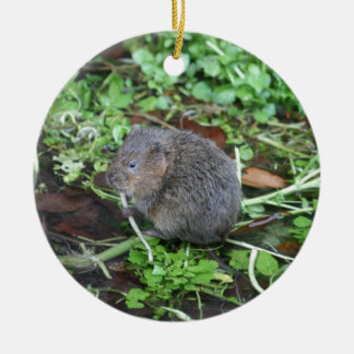 Water Vole Christmas Ornament