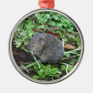 Water Vole Silver-Colored Round Decoration
