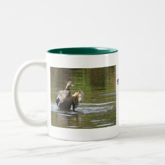 Water Walking Mallard Two-Tone Coffee Mug