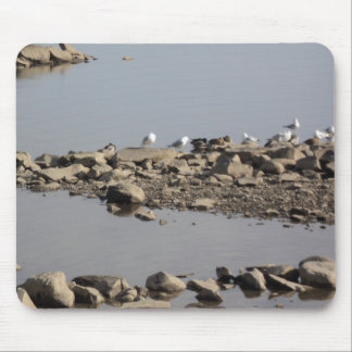Water Water Everywhere Mouse Pad
