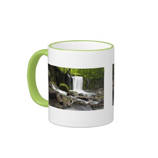 Water Waterfall Park Green Country Grace Destiny Coffee Mug