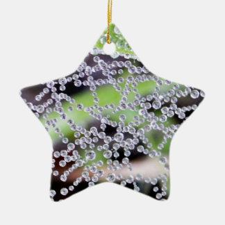 Water Web Star Ornament