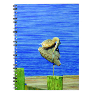 Waterbird Notebook