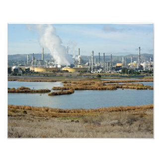Waterbird Park and Shell Refinery Photograph
