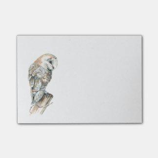 Watercolor Barn Owl Bird Nature Art Post-it Notes