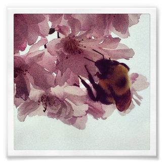 Watercolor Bee Photographic Print