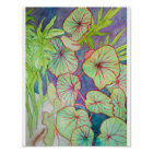 Watercolor Begonia and Philodendron Poster