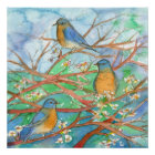Watercolor Bluebirds Blossom Fruit Tree Painting Poster