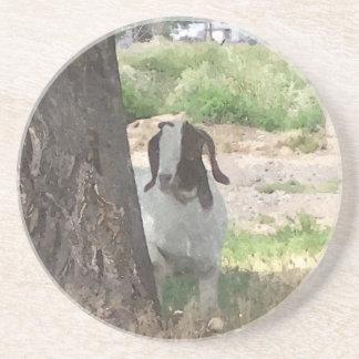 Watercolor Boer Goat Coasters