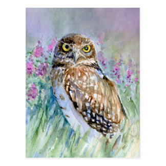 Watercolor Burrowing owl Post Cards