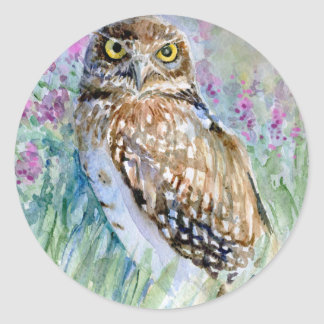 Watercolor Burrowing owl Round Stickers