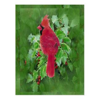 Watercolor Cardinal Bird Holly Berry Christmas Postcard