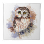 Watercolor Cute Little Saw Whet Owl Bird Small Square Tile