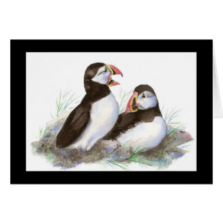 Watercolor Cute Puffins, Birds Card