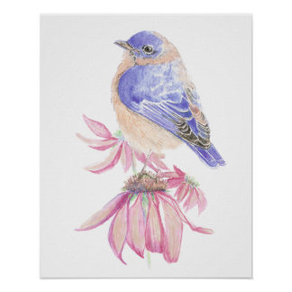 Watercolor Eastern Bluebird Blue Garden Bird Poster