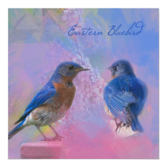 Watercolor Eastern Bluebirds Poster