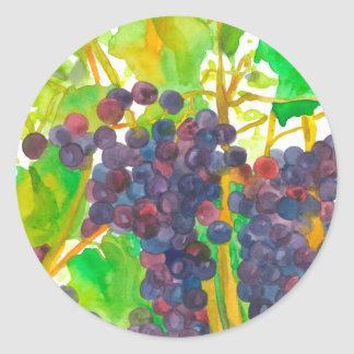 Watercolor Grapes Fruit Classic Round Sticker