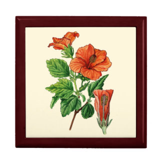 Watercolor Hibiscus Large Square Gift Box