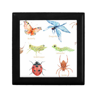 Watercolor insect illustration gift box