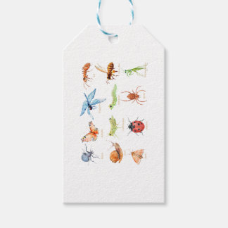 Watercolor insect illustration gift tags