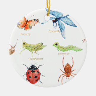 Watercolor insect illustration round ceramic decoration