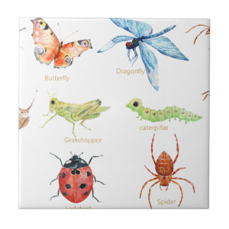 Watercolor insect illustration tile