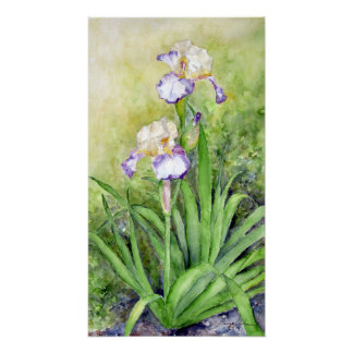 Watercolor Iris on Archival Paper Poster