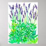 Watercolor Lavender Flower Garden Poster