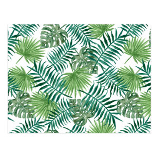 Watercolor Leaves Tropical Palm Tree Leaf Pattern Postcard