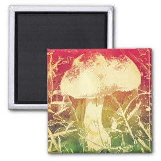 Watercolor Mushroom Magnet
