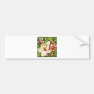 Watercolor of Magnolia Flower Bumper Sticker