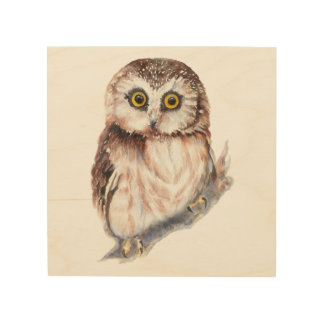 Watercolor Owl Cute Bird Animal Nature Art