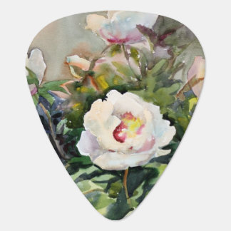 Watercolor Painting Of The Beautiful Flowers Plectrum