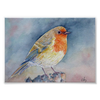 Watercolor Painting Robin bird Poster
