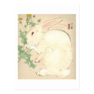 Watercolor Rabbit Post Cards