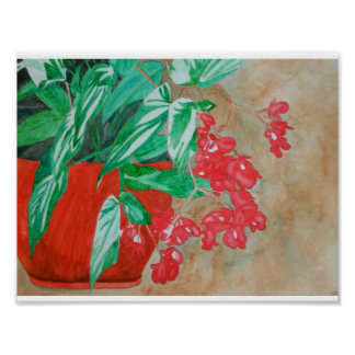 Watercolor Red Begonia in Pot Poster