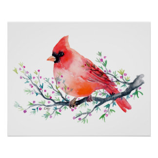 Watercolor Red Cardinal on Berry Branch Poster