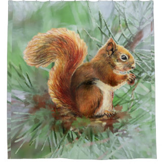 Watercolor Red Squirrel in Tree Animal Nature Art Shower Curtain
